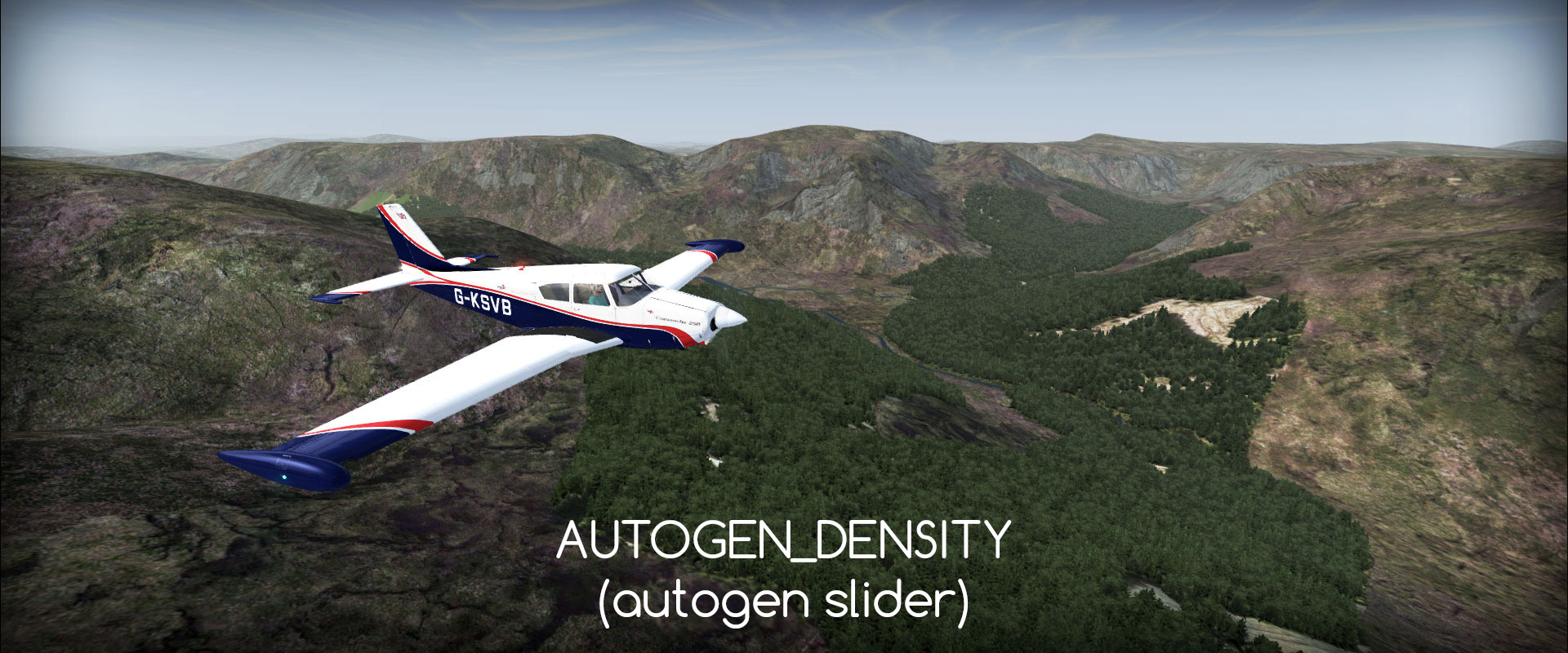 AUTOGEN DENSITY in FSX